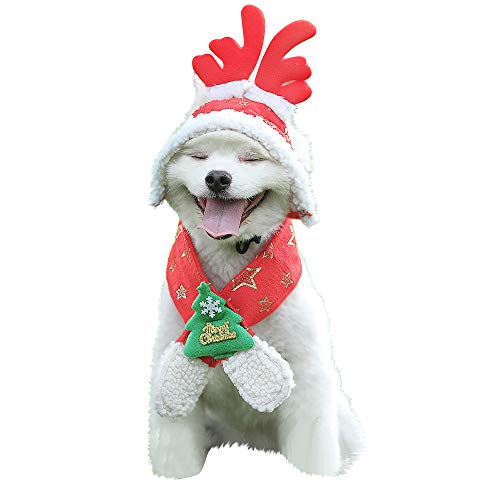 Amphia Haustier Kostüm - Weihnachtshaustier Weihnachtsschal + Hut,Haustier Hund Katze Kappen Weihnachtsbaum Star Funkelnd Gedruckt Hut Und Schal(Rot,S)