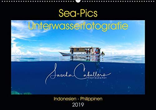 Sea-Pics Unterwasserfotografie (Wandkalender 2019 DIN A2 quer): Unterwasseraufnahmen aus Südostasien (Monatskalender, 14 Seiten ) (CALVENDO Hobbys)