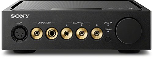 Sony TA-ZH1ES - Amplificador de Auriculares de Alta resolución (S-Master...