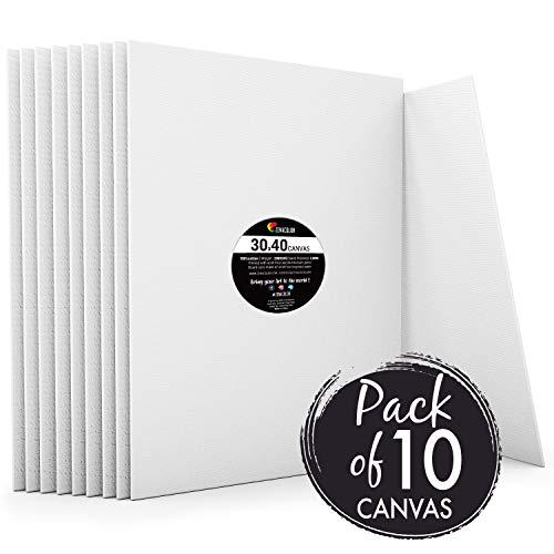Zenacolor - Set de 10 Canvas - Lienzos para Pintar 30x40cm - Todos los Tipos de Pintura sobre Tela ...