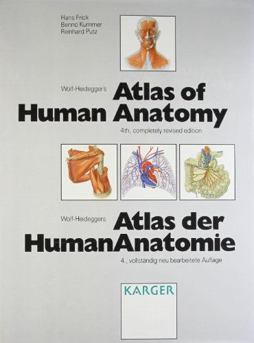Human pdf anatomy of atlas
