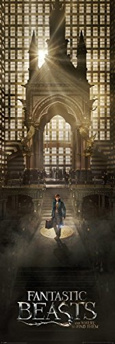 Fantastic Beasts and Where to Find Them Poster da porta Teaser 53 x 158 cm Laminato