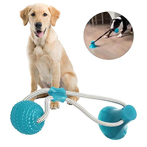Volwco Multifunktions-Spielzeug für Haustiere, Kauspie… | 06406064267177
