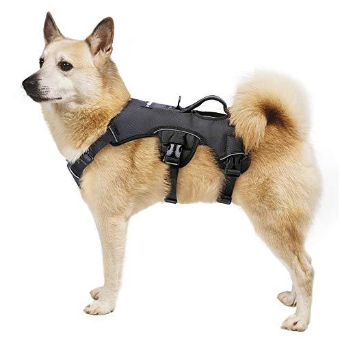 rabbitgoo No-Pull Hundegeschirr mit Tragegriff für Hunde Brustgeschirr Reflektierendes Geschirr Verstellbare Hundeweste für Outdoor, Training Sicher Kontrolle Gepolstert (Schwarz)