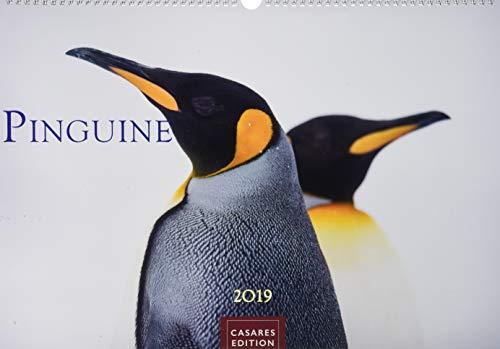 Pinguine 2019 L 50x35cm