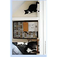 Cat Bookends Blank Book Lined 5.5 by