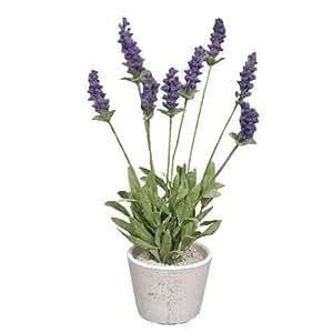 Plantes artificielles lavande lavandula violet deco for Amazon plante artificielle