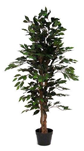 ficus-artificiale-verde-con-tronco-vero-h125-cm-l-50-cm