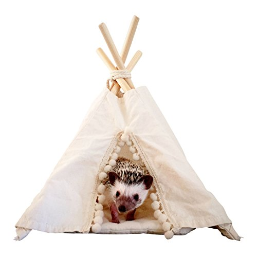 Igel Tipi mit einer weichen Matte, Meerschweinchen Bett, kleines Haustier Tipi, kleines Tierhaus, Haustier Bett, Haustier Tipi, Igelhaus
