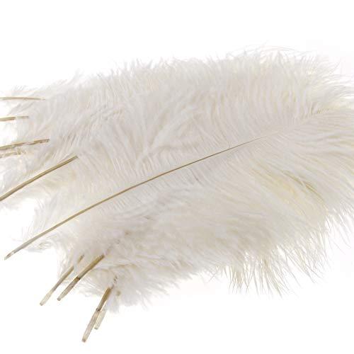 10x Straußenfeder Strauß Feder Kostüm Deko weiß 25-30cm - Strauß Kostüm Kind