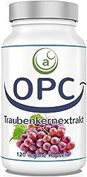OPC Traubenkernextrakt Kapseln HOCHDOSIERT + VEGAN - aus französischen Weintrauben - LABORGEPRÜFT - 750 mg je Tagesdosis - 120 Kapseln, 1 Dose (1 x 57 g)