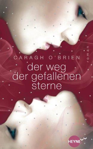 Der Weg der gefallenen Sterne: Roman -