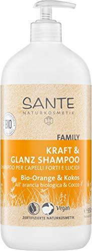 SANTE Naturkosmetik Glanz Shampoo Bio-Orange & Kokos, 950ml Familiengröße, Pumpspender, Fruchtiger Duft, Natürliche Haarpflege ohne Silikon & Parabene, Vegan