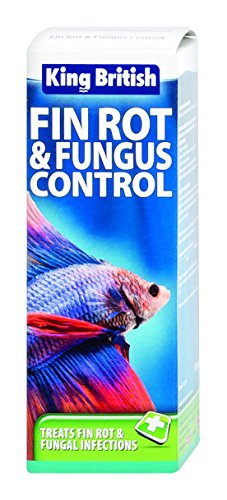 King British Fin Rot and Fungus Control, 100 ml Test
