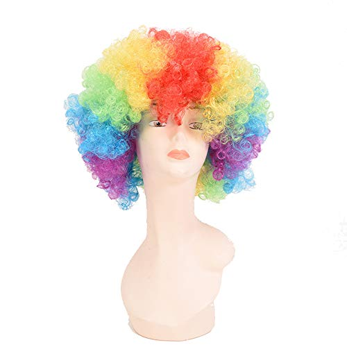 Unbekannt YF Clown Perücke Kinder perücke Regenbogen Afro Perücke für Coole Bunte Lockenperücke Frisur Erwachsene Hippie Clown Frisur Partei Disco lustige Perücke für Kind Weihnachten Party Dress Up (Dress Up Disco)