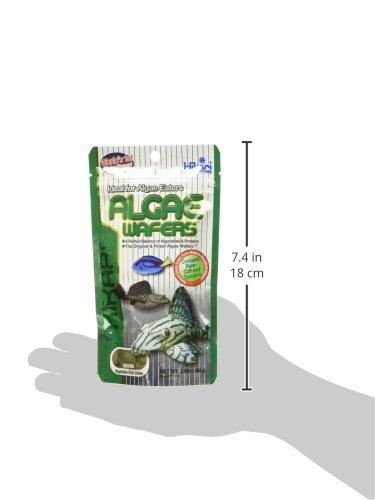 Hikari Algae Wafers [Sng] 82G 5