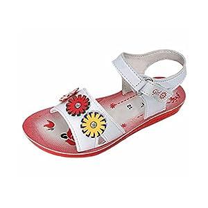 Ashoka Baby Girls Multicolor Sandal