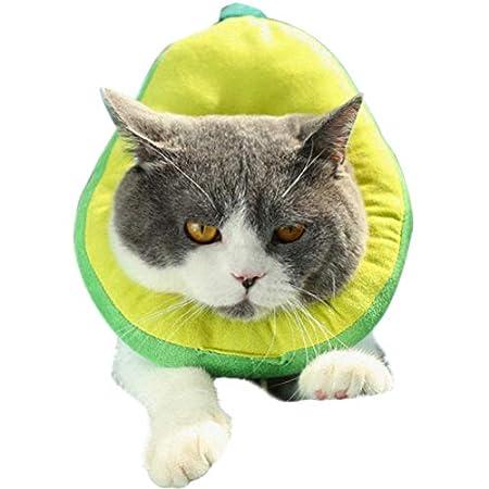Schutzkragen Für Katze, Katzen Halskrause Verstellbar Weich Soft Anti Biss Safty Kragen Wundheilung Wiederherstellung Für Kleine Haustiere(Grün)