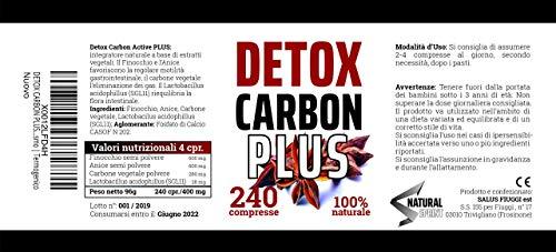 Zoom IMG-3 detox carbon active xxl 240