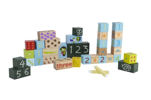 pbs-kids-number-exploration-blocks-by-fortune-east