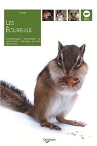 Les écureuils par L Benato