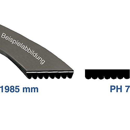 citroen-v-belt-1985-h-8-1985-ph-8-tumble-dryer-drive-belt