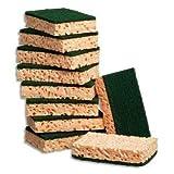 BRITE Vaisselle d'éponges avec abrasives Pads classiques  - 12 x 8 x 2 cm- Lot de 10