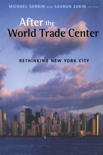 After the World Trade Center: Rethinking New York City (Cultural Spaces Book 2) (English Edition)