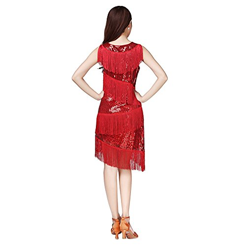 Qlan FemmesLatin Dance Dress, Tango Rumba Latin Sexy Femmes Rhythm Tassel Sequins Dance Dress