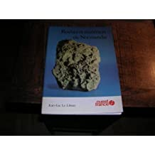 Roches et minéraux de Normandie (Guides-couleurs)