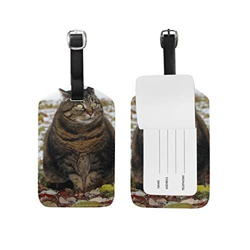 Hunde 2-stück Gepäck-set (Kofferanhänger für Gepäck Koffer Funny Cat Sitting Leaf Leder Reisetasche Adressetiketten 1 Stück)