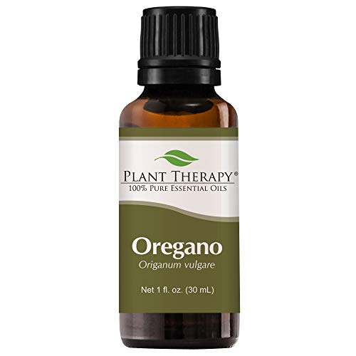 Oregano (Origanum) Essential Oil. 30 ml (1 oz). 100% Pure, Undiluted, Therapeutic Grade. by Plant Therapy Essential Oils