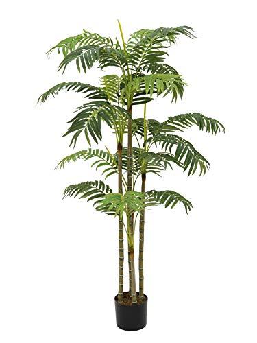 Europalms Areca Palme, 180cm (9639397603057)