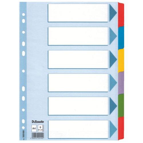 Leitz Kartonregister Blanko, A4, Karton, 6 Blatt, weiss