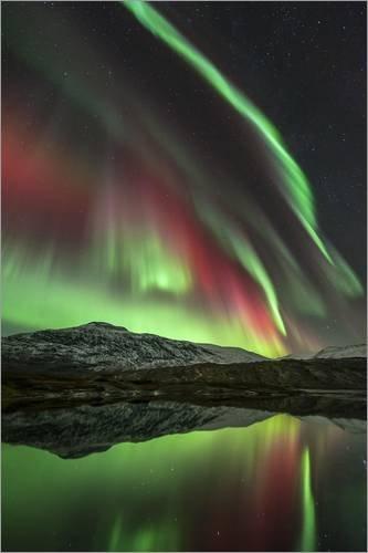 Posterlounge Forex-Platte 120 x 180 cm: Aurora Borealis, Norway von Tommy Eliassen/Science Photo Library