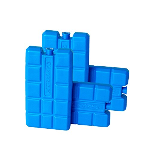 41WBmQT8HdL. SS500  - ToCi Ice Packs Each 200 ml   Cooling Elements for the Cool Bag or Box, ., 4 (EU)