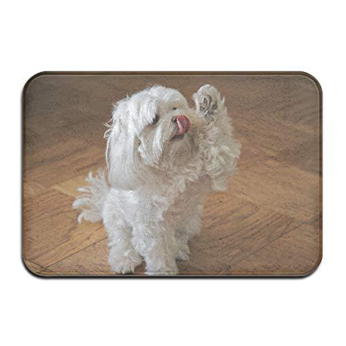 Pengyong süßer Malteser Hund Outdoor Gummimatte Vorne Tür Matten Veranda, Garage, großer Durchfluss, Standardteppich, 60 x 40 cm - Garage Tür Hund