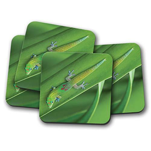 Juego de 4 posavasos de oro para el día del polvo Gecko, repelente de lagarto, regalo de la selva verde #14244