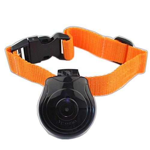 TOOGOO Digital Haustier Kragen Cam Kamera Mini Video Recorder Kamera DVR Video Recorder Monitor Fuer Hund Katze Welpen Schwarz