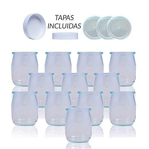 Vasos yogurtera de cristal con tapa pack de 12 botes para yogurtera de 143 Ml tarros para postres recipiente para moulinex , lidl , severin, braum y resto de yogurteras (Tapa Transparente)