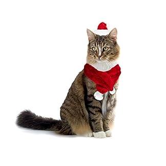 064234 Conjunto de bufanda y sombrero PAPÁ NOEL para gatos y perros pequeños