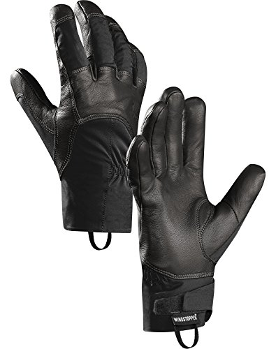 Arcteryx Teneo Glove - S