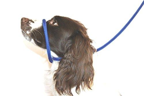 Dog & Field 8 Anti -Pull- Blei/Halter / Kopf Kragen (blau) - Einheitsgröße - Super Soft geflochtenes Nylon - Montageanleitung inklusive -