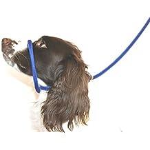 Dog & Field - Correa anti tirones para cabeza y cuello–Talla única–Nailon trenzado muy suave–Instrucciones de colocación incluidas