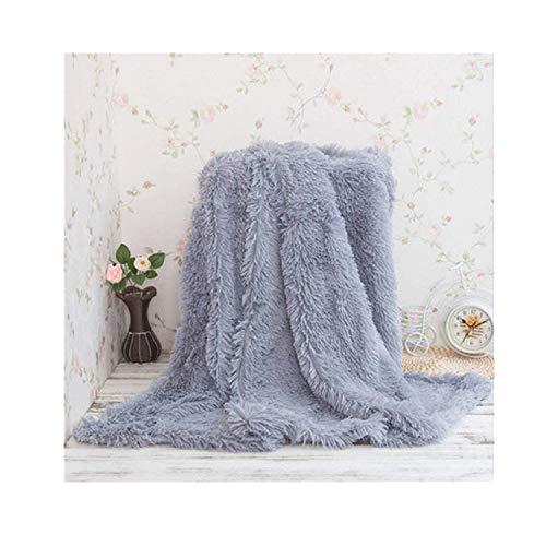 YouLoveHome Plaid Aspect Peau Longhair Canapé Couverture Microfibre Fausse Fourrure Couvre-Lit/Climatisation TV, Polyester, Gris, 160 x 200 cm
