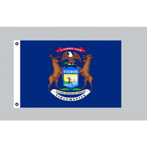 Flagge 90 x 150 : Michigan