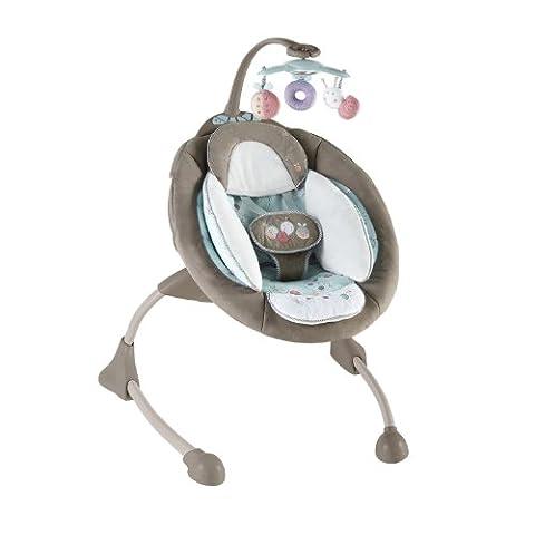 BRIGHT STARTS La balancelle bébé lit bébé,