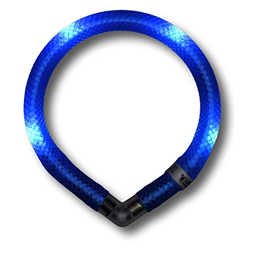 LEUCHTIE® Leuchthalsband Mini blau Größe 27,5 I LED Halsband extra für kleine Hunde I wasserdicht I enorm hell