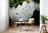 Wallsticker Warehouse Blumen Hortensie Weiß Vlies Fototapete Fotomural - Wandbild - Tapete - 254cm x 184cm / 2 Teilig - Gedrückt auf 130gsm Vlies - 1564V4 - Blumen