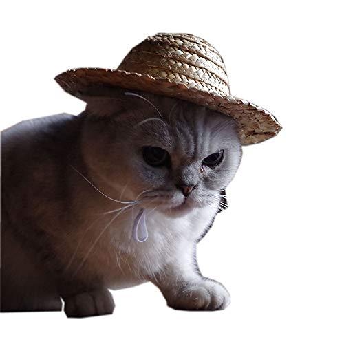(Vlook Hund Sombrero Hat Strohhacke mit Elastic Band Cute und komfortabel Easy to Carry to Any Occasion für kleine Pets/Puppy/Katze)
